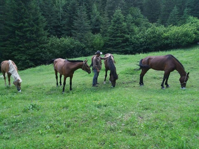 horse-adventures-western-rhodopes-22