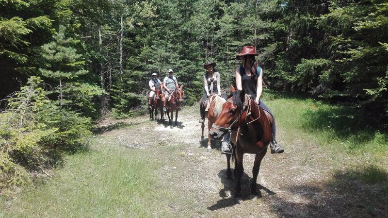 horse-adventures-western-rhodopes-24