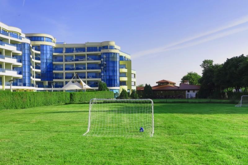 sport-field